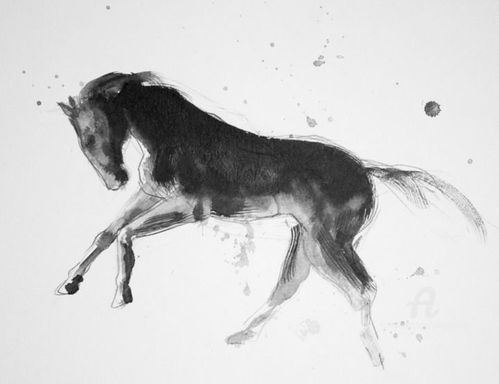 Cheval rétif 013