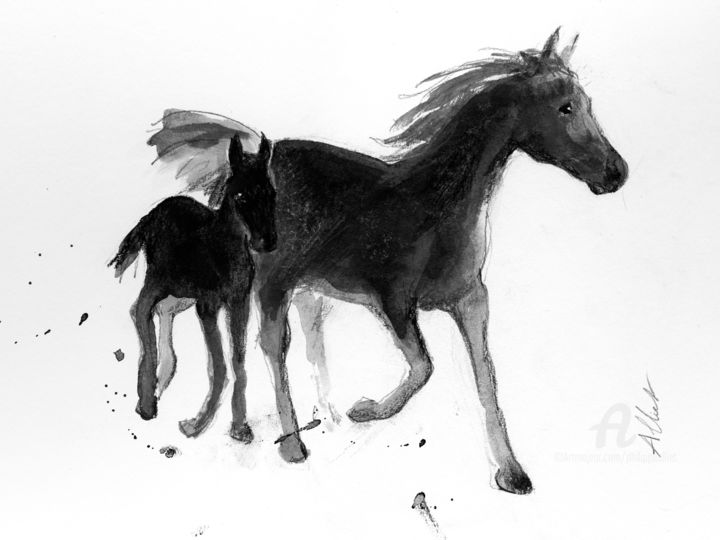 Cheval 029
