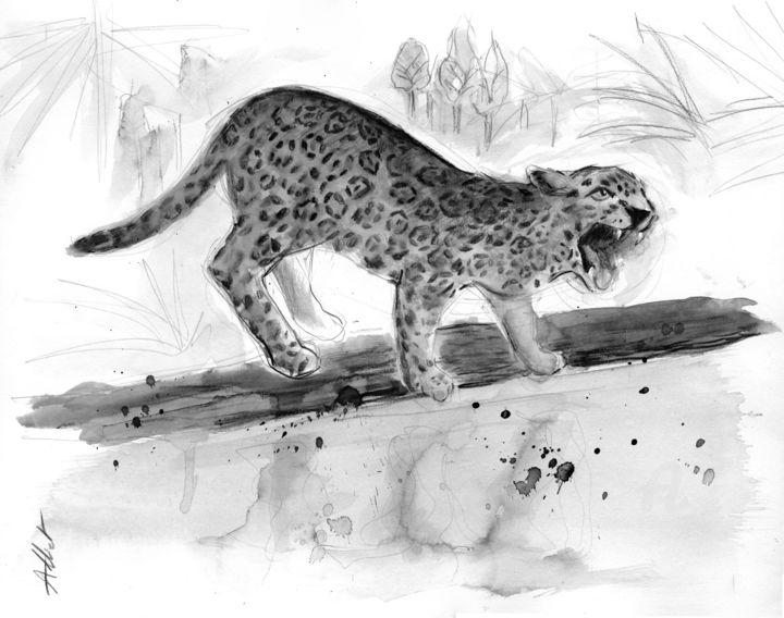 Jaguar-Trilogie guyanaise